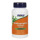 NOW Foods Andrographis Extract 400mg - 90 kaps.