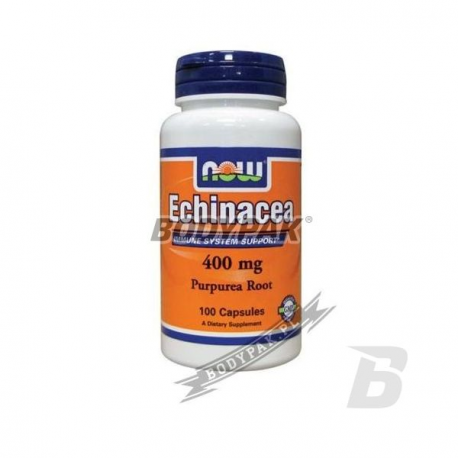NOW Foods Echinacea Purpurea Root - 100 kaps.